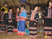 Doi Mae Salong & Mae Sai