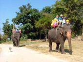 Pa La U Waterfalls Elephant Riding