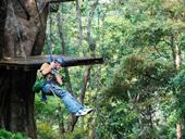 Canopy Adventure Tour