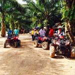 Krabi 4 in 1 Kayaking ATV & Elephant trekking