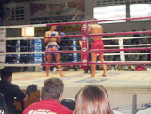 Thai Boxing show