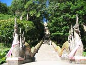 Half day city tour & temples tours