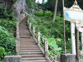 Krabi Tiger Temple City Tour