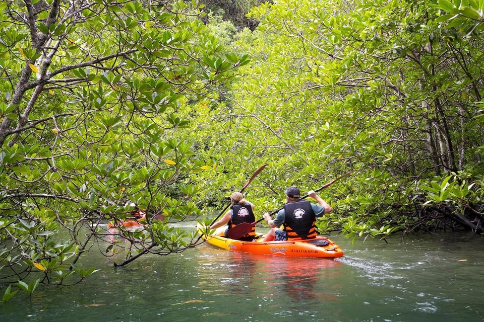 Kayak at Ao Thalane and Elephant Trekking