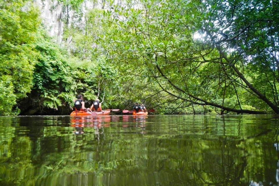 Kayak at Ao Thalane and Elephant Trekking