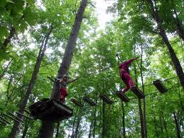 Tree Top Adventure Park Krabi