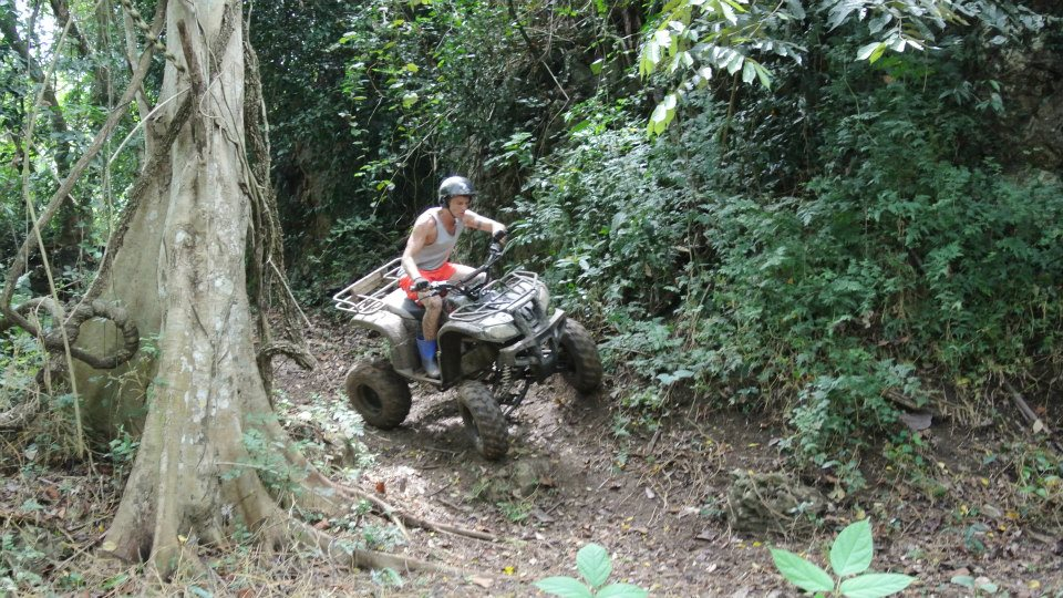 ATV tree top adventure tour