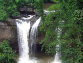 Khao Yai National Park  One Day tour